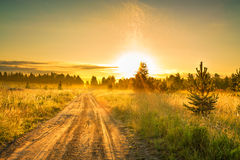 Summer rural landscape with sunrise  and the road Royalty Free Stock Image