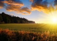 Summer rural landscape at sunset. Summer rural landscape at sunset in Czech Republic Royalty Free Stock Photos