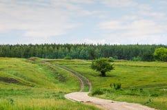 Summer rural landscape view Stock Photos