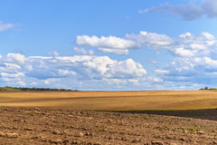 Summer Rural Landscape. Wheat Field, Plough Land and Blue Sky Royalty Free Stock Photos