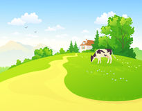 Summer rural scene. Illustration of a rural landscape with a cow Stock Image