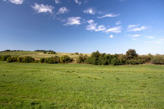 Summer rural summer landscape Stock Photography
