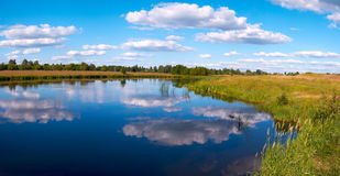 Summer rushy lake panorama Royalty Free Stock Photography