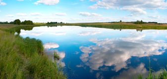Summer rushy lake panorama Stock Photography