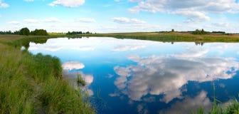 Summer rushy lake panorama Stock Photography