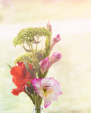Summer rustic bouquet of gladioli Royalty Free Stock Photo