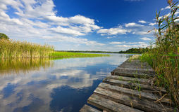 Summer's lake scenery Royalty Free Stock Images