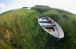 Summer's lake scenery with wooden boat Royalty Free Stock Photo