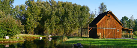 Summer's Morning. A panorama of a barn, pond, and trees on a bright summer's morning Royalty Free Stock Image