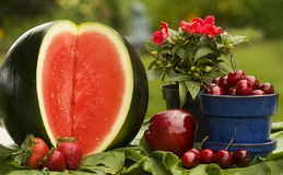 Summer's Red Fruits Stock Photos