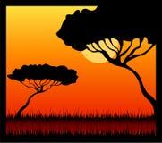 Summer safari Royalty Free Stock Image
