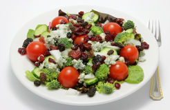 Summer Salad. A healthy summer salad with mixed greens, cherry tomatoes, broccoli, onions, persian cucumbers, feta and blue cheese, raisins, and dried Royalty Free Stock Photo