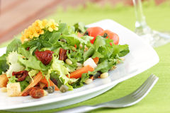 Summer salad. Lettuce,pine-nuts,carrot,croutons,capers,sundried tomatoes,rocca,basil and a flower on top as deco royalty free stock photo