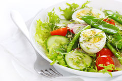 Summer salad of asparagus and young green peas Royalty Free Stock Images