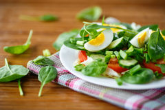 Summer salad with egg Royalty Free Stock Image
