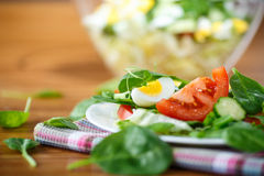 Summer salad with egg Stock Photos