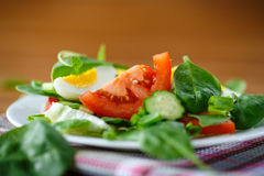 Summer salad with egg Royalty Free Stock Photos