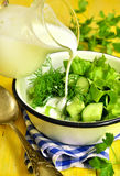 Summer salad from greens. Stock Images