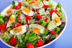 Summer salad with tomatos and boiled eggs Royalty Free Stock Photos