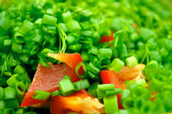 Summer Salads. Colorful summer salads as background Stock Photography