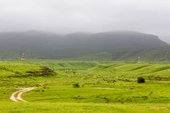 Lush green landscape, trees and foggy mountains in Ayn Khor tourist resort, Salalah, Oman. Summer In Salalah Oman, Lush green landscape, trees and foggy stock images