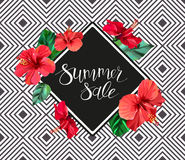 Summer sale announcement poster, banner, flyer. Composition with lettering on hibiscus flowers and leaves background. Stock Images