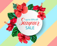 Summer sale announcement poster, banner, flyer with composition of lettering on hibiscus flowers and leaves background Royalty Free Stock Photos