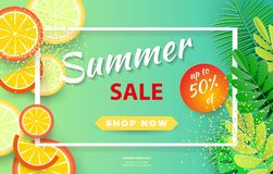 Summer sale background layout for banners,Wallpaper,flyers, invitation, posters, brochure, voucher discount.Vector illustration vector illustration