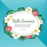 Summer sale background with tropical palm leaves and plumeria flower. Poster for print, party invitation, sale design. Summer sale background with tropical palm stock illustration