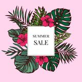 Summer sale badge over tropical leaves on a pink background. Hand drawn vector illustration vector illustration