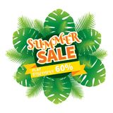 Summer sale banner design. With green palm leaves Stock Photo
