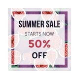 Summer sale banner with figs fruit. Design template. Vector illustration Stock Photography