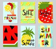Summer sale banner with fruit, place for text. Vector background Royalty Free Stock Photography