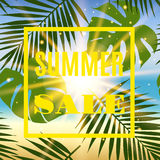 Summer sale banner with palms and sun. Stock Images