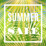 Summer sale banner with palms and sun. Royalty Free Stock Photos