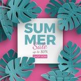Summer sale banner with paper cut frame and tropical plants on pink background, floral design for banner, flyer, poster vector illustration