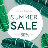 Summer Sale banner, poster with palm leaves, jungle leaf and lettering. Floral tropical summer background. Vector royalty free stock photo