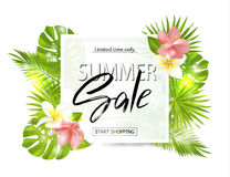 Summer sale banner, poster with palm leaves, jungle leaf, tropical flowers and handwriting lettering. Vector. Illustration EPS10 Stock Image