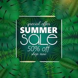Summer sale banner, poster template with palm leaves and jungle leaf . Floral tropical summer background. Summer sale banner, poster template with palm leaves Royalty Free Stock Photos