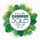 Summer sale banner, poster template with palm leaves and jungle leaf . Floral tropical summer background. Summer sale banner, poster template with palm leaves stock illustration