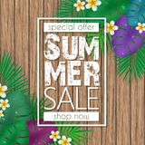Summer sale banner, poster template with palm leaves, jungle leaf and flowers on wood background. Summer sale banner, poster template with palm leaves, jungle Royalty Free Stock Image