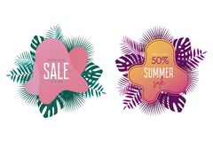 Summer sale banner template. Promotion banners design with palm leaves, exotic and tropic background. Promo stickers and badges. Vector vector illustration