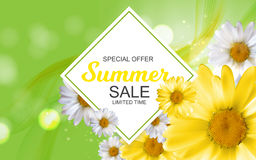 Summer Sale Banner Template for your Business. Vector Illustrati. On EPS10 Royalty Free Stock Photos