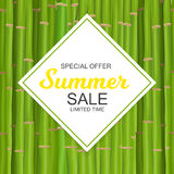 Summer Sale Banner Template for your Business. Vector Illustrati Royalty Free Stock Photo