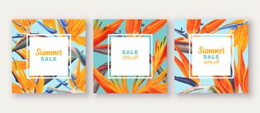 Summer sale banner with tropical flowers - Strelitzia, on background with bright colours. Can be used as greeting, invitation card, template design, cover stock illustration