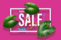 Summer sale banner with tropical green leaves heliconia flower b Stock Image