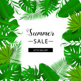 Summer sale banner. Tropical leaves. Vector illustration. Summer banner with 3d hawaiian leaf. Floral banner. Stock Photo
