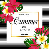 Summer sale Concept. Summer background with tropical flowers. Template Vector Royalty Free Stock Image