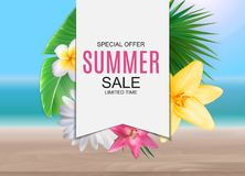 Summer Sale concept poster background. Vector Illustration. EPS10 Royalty Free Stock Photos