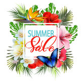 Summer sale Concept. Summer background with tropical flowers, butterflies. Vector. Royalty Free Stock Images